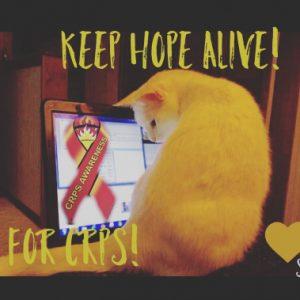 Cats help raise hope for CRPS/RSD